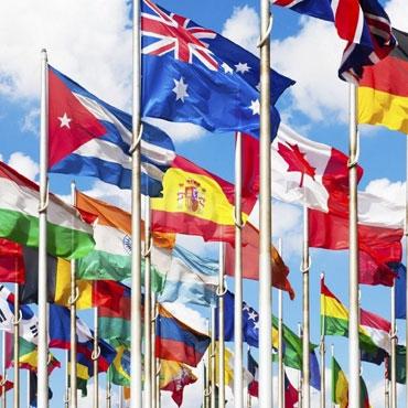 Türk ve Diğer Ülke Bayrakları